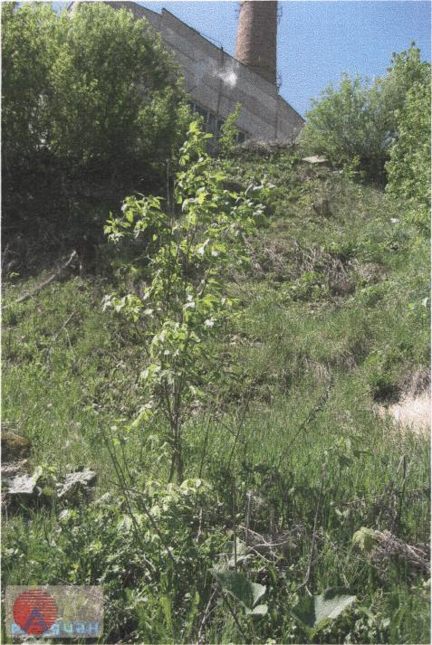 Активизация оползней в периоды затяжных водообильных дождей с поверхностью отрыва непосредственно у стены котельной