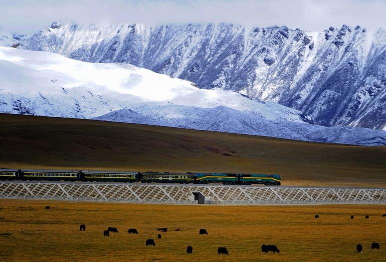 Тибет- Цинхайская железная дорога