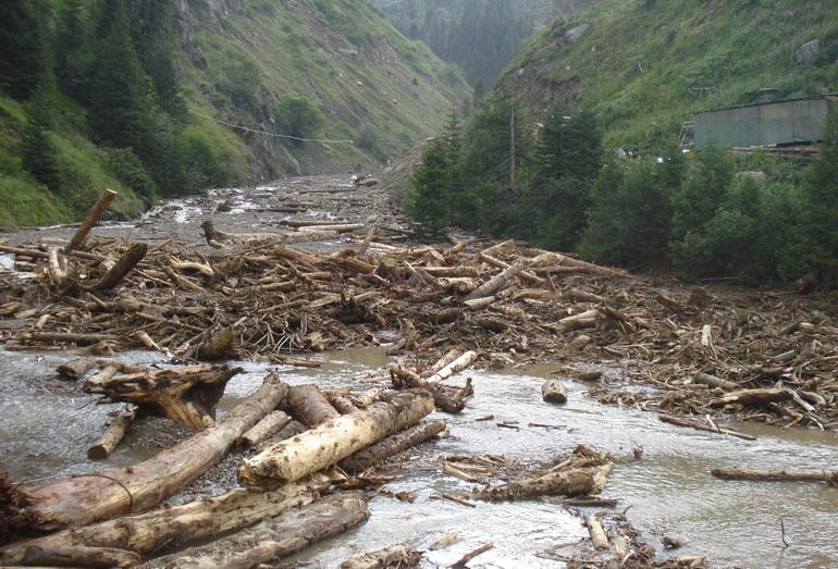 Антропогенный дождевой сель 2013 г. в Сарысае образовался в результате размыва перемещенного грунта на горнолыжном курорте Шымбулак