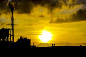 Взлет и падение экологической экономики