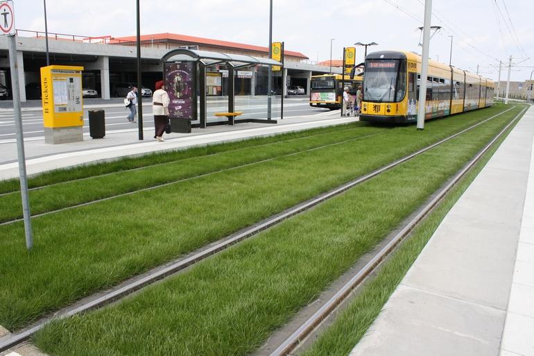Зелёный трамвай в Дрездене