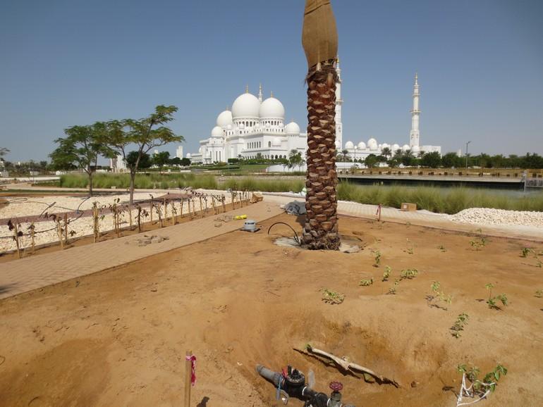 Установка системы почвеннной иригации в ОАЭ