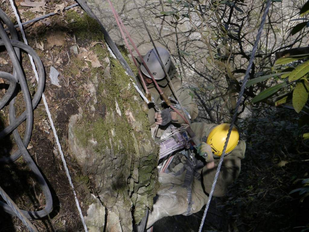 Системы защиты от камнепадов
