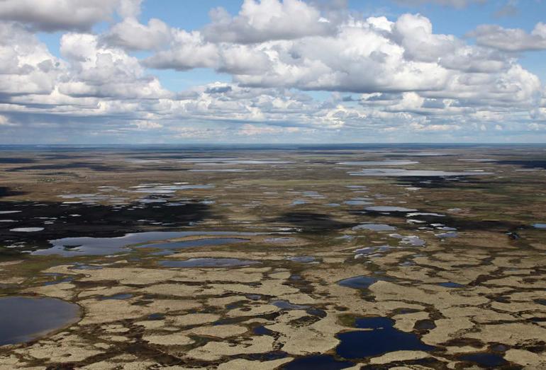 Пановама болот в зоне вечной мерзлоты